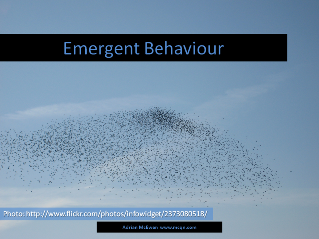 Emergent Behaviour